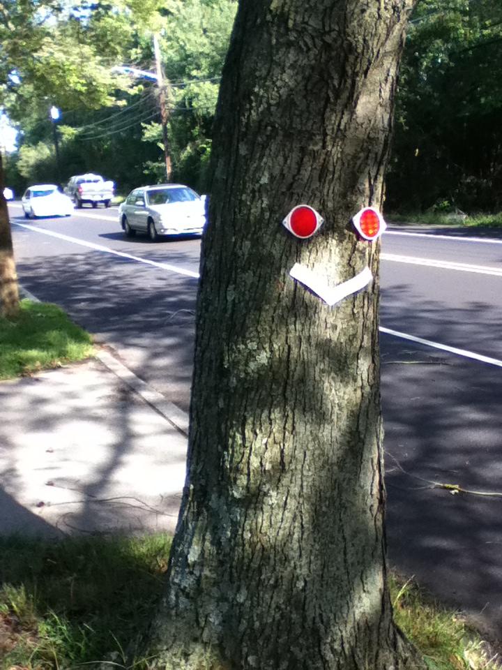 tree-face.JPG
